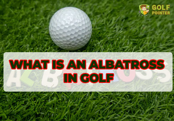 What is an albatross in golf